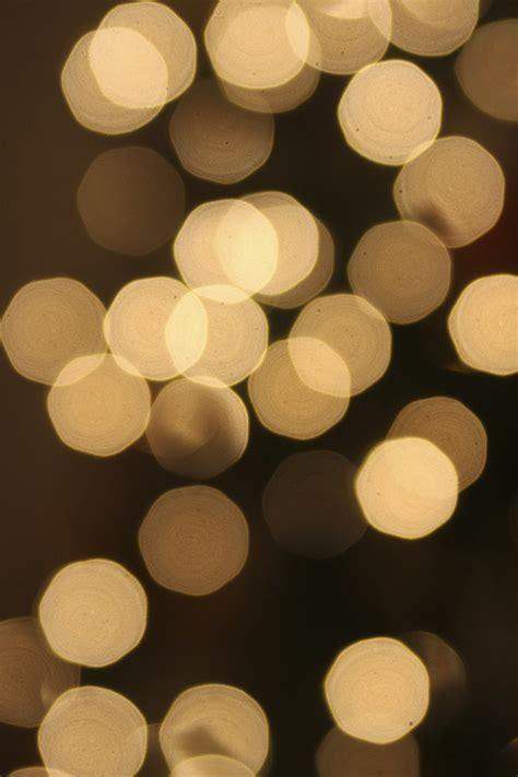 Novelty string lights On WinLights.com   Deluxe Interior