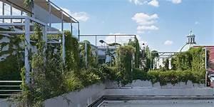 Immer Blühender Garten : richtige gartengestaltung die natur gewinnt immer garten lifestyle ~ Markanthonyermac.com Haus und Dekorationen