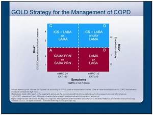 Asthma Classification Chart Copd And Asthma World Allergy Organization