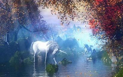 Magical Unicorns Creatures Background Fantasy Wallpapers Magic