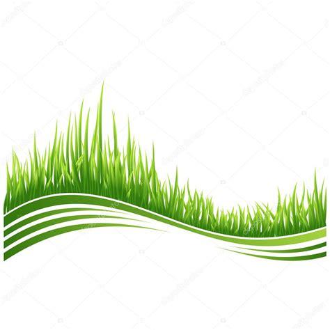green grass stock vector  designerthings