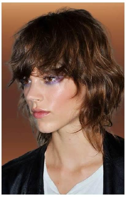Shag Hairstyles Haircuts Colors