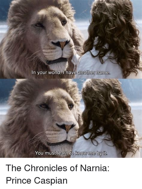 Narnia Memes - 25 best memes about the chronicles of narnia prince caspian the chronicles of narnia prince