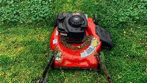 Best Lawn Mowers For Senior Citizens 2020  Reviews  U0026 Buyer