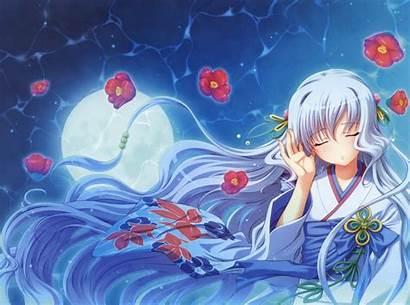 Aoi Shiro Anime Wallpapers