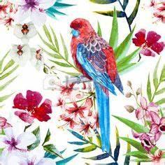 dessin fleur tropicale beau motif aquarelle vecteur With affiche chambre bébé avec interflora fleurs exotiques