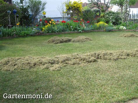 Wann Soll Rasen Vertikutieren by Rasenpflege Nach Dem Winter Gartenmoni Altes Wissen