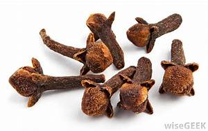 What are Cloves? (with pictures)