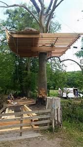 Cabane Dans Les Arbres Construction : construction d 39 une nouvelle cabane ~ Mglfilm.com Idées de Décoration