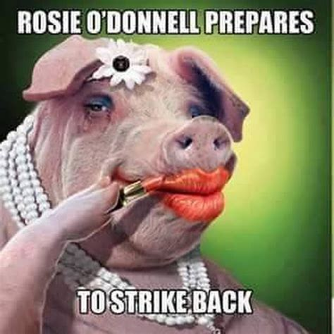 Rosie O Donnell Memes - hope cassidy google