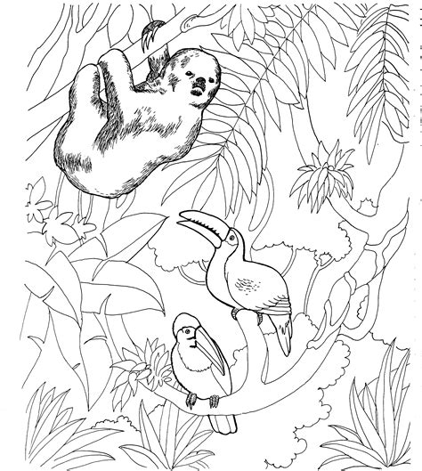 cute sloth coloring pages coloring coloring pages