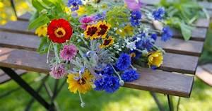 Mein Garten Spiele Kostenlos : blumenstrau schnittblumen haltbar machen mein sch ner garten ~ Frokenaadalensverden.com Haus und Dekorationen