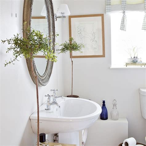 Plants For Bathrooms Uk by Plain White Bathroom With Potted Plants Decorating