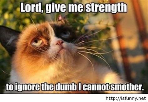Lord Help Me Meme - 25 very funny grumpy cat meme pictures and photos