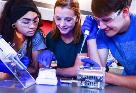 Bringing Realworld Stem Experiences To The Classroom By Using Minipcr Minipcr