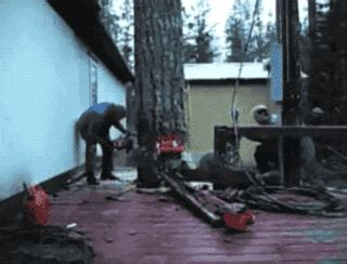 absolutely unexpected gifs barnorama