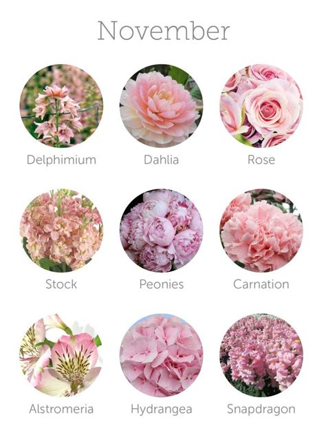 wedding budget tip  choose  season flowers