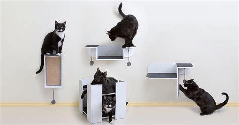 Modern Stylish Cat Furniture And Cat Stuff by Stylish Multipurpose Cat Furniture I Cat