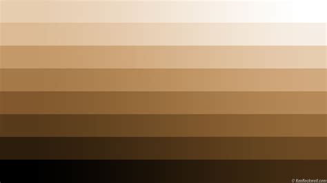 Brown Shade by Various Shades Of Brown Citizen By Chance