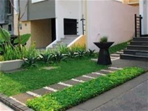 inilah jenis jenis rumput taman minimalis teknik