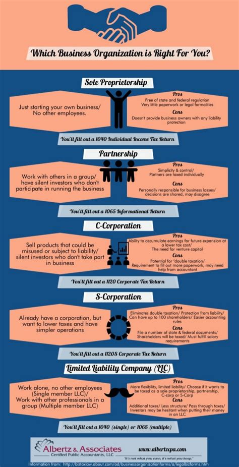 Organization Business by Types Of Business Organizations Infographic