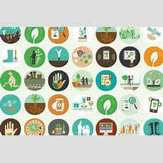 Grow & The Global Goals  Food, Climate Action & Life On Land
