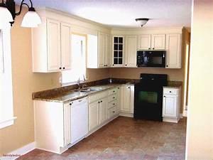 Elegant, Painted, Kitchen, Cabinets, Ideas