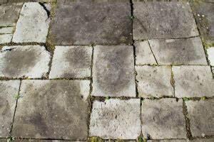 Unkrautvernichtung Auf Gehwegen : die fugen auf den gehwegen reinigen so geht s ~ Watch28wear.com Haus und Dekorationen