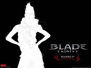 Download Blade: Trinity Wallpaper 1024x768 | Wallpoper #130171