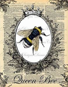 queen bee | Bees & Queen Bees | Pinterest