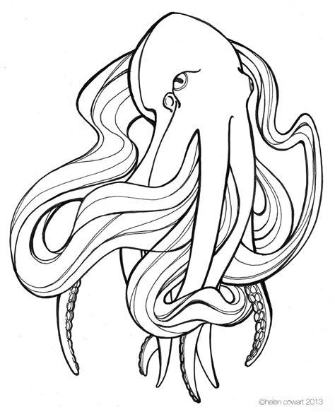 octopus ii ink drawing  images  drawings
