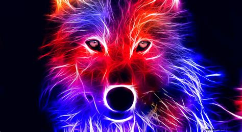 Blue Cool Wolf Wallpaper by Wolf Wallpapers Wallpapers Box
