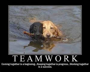 90 best TEAM images on Pinterest | Teamwork, Basketball ...