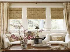 The Best Window Blinds For Living Room Decorate Living Room Living Room Window Treatment Ideas For Living Room