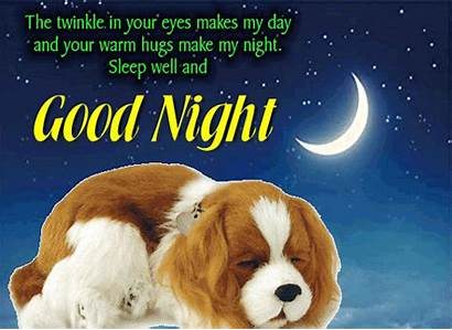 Sleep Well Night Goodnight Cards Ecard Greetings