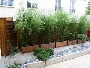 Gros Bambou Deco : haie de bambous en pots ext rieur ~ Teatrodelosmanantiales.com Idées de Décoration