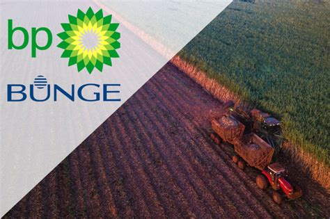 bunge bp finalize biofuels jv    baking business