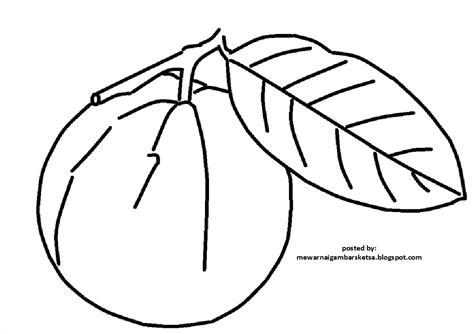 mewarnai gambar mewarnai gambar sketsa buah jambu 1