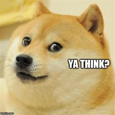 Ya Think Meme - doge meme imgflip