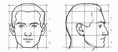 Human Face Drawing Faces Proportions Anatomy Thirds