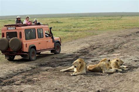 tanzania safari planning advice    african