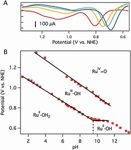 Rapid Water Oxidation Electrocatalysis By A Ruthenium