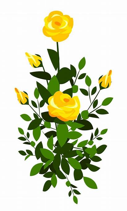 Rose Yellow Roses Clipart Bush Flowers Clip