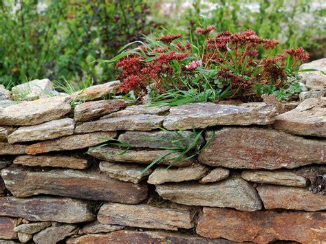 Was Kostet Ein Landschaftsgärtner by Gartenbau Allg 228 U Gartenbau Landschaftsg 228 Rtner