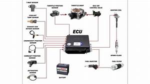 Ecu     Engine Control Unit    Inputs  U0026 Outputs   Explained