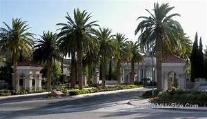 Roma Hills Las Vegas, Henderson - Las Vegas Real Estate
