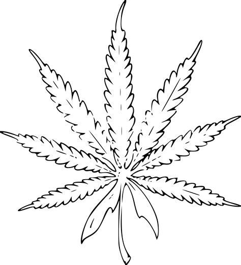 coloriage feuille de cannabis 224 imprimer