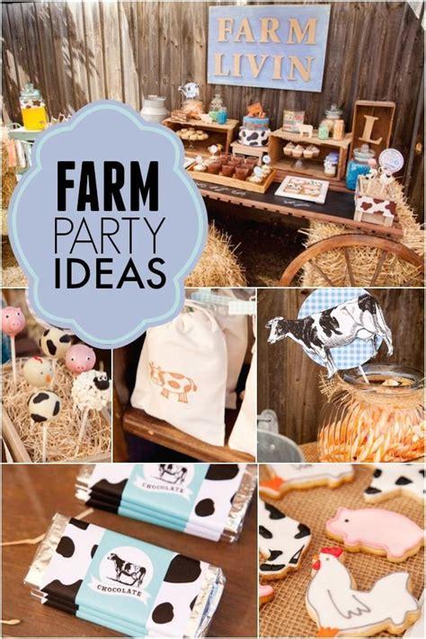precious farm themed boy   birthday party farm