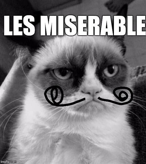 Miserable Cat Meme - grump imgflip