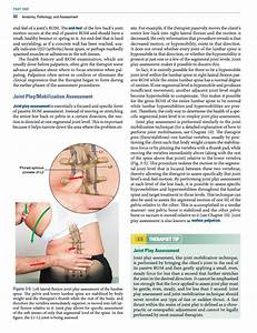 Manual Therapy For The Low Back And Pelvis  A Clinical